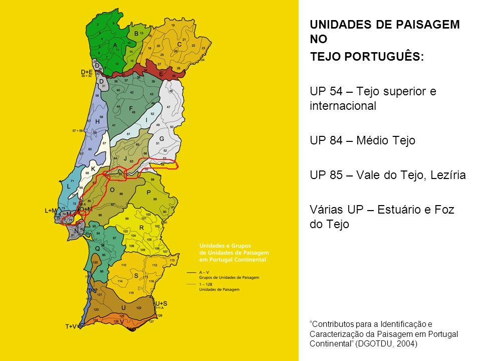 UNIDADES DE PAISAGEM NO TEJO PORTUGUÊS: