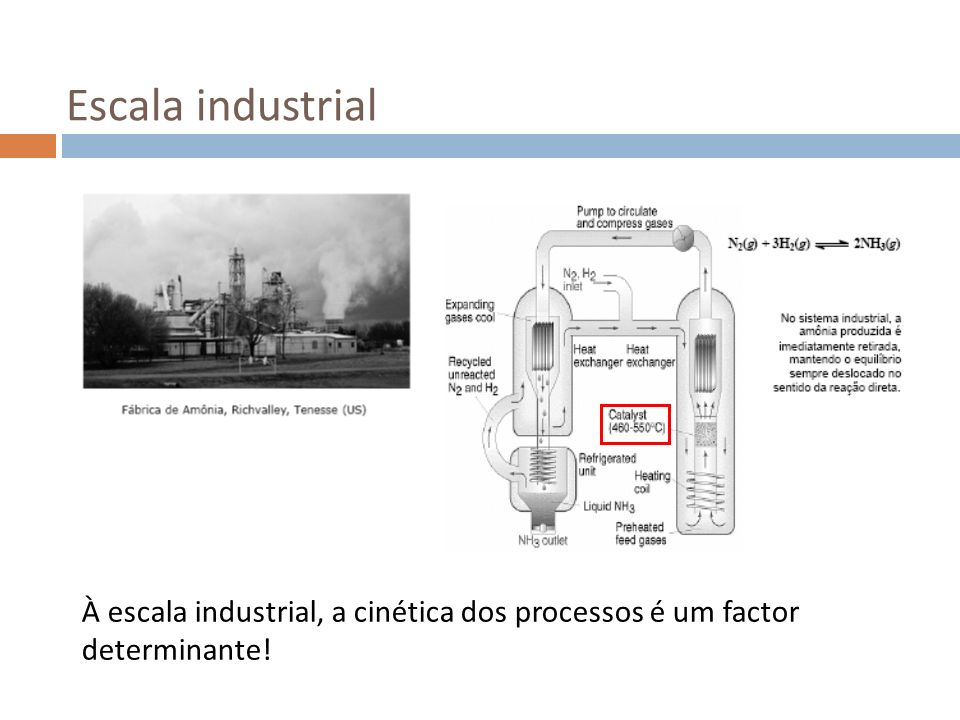 Escala industrial À escala industrial, a cinética dos processos é um factor determinante!