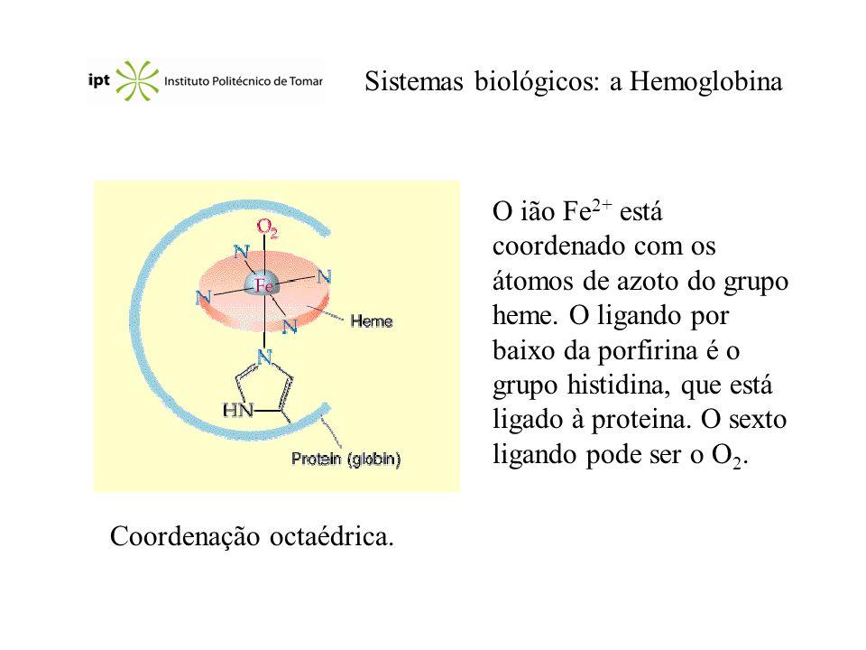 Sistemas biológicos: a Hemoglobina