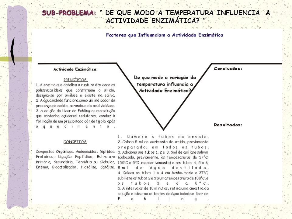 SUB-PROBLEMA: DE QUE MODO A TEMPERATURA INFLUENCIA A ACTIVIDADE ENZIMÁTICA