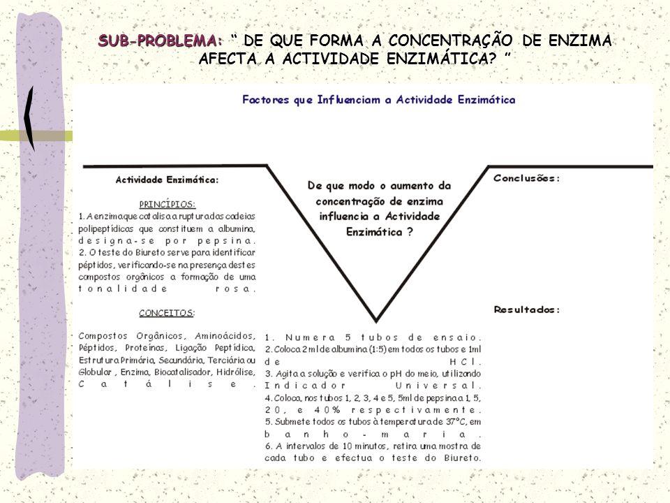 SUB-PROBLEMA: DE QUE FORMA A CONCENTRAÇÃO DE ENZIMA AFECTA A ACTIVIDADE ENZIMÁTICA