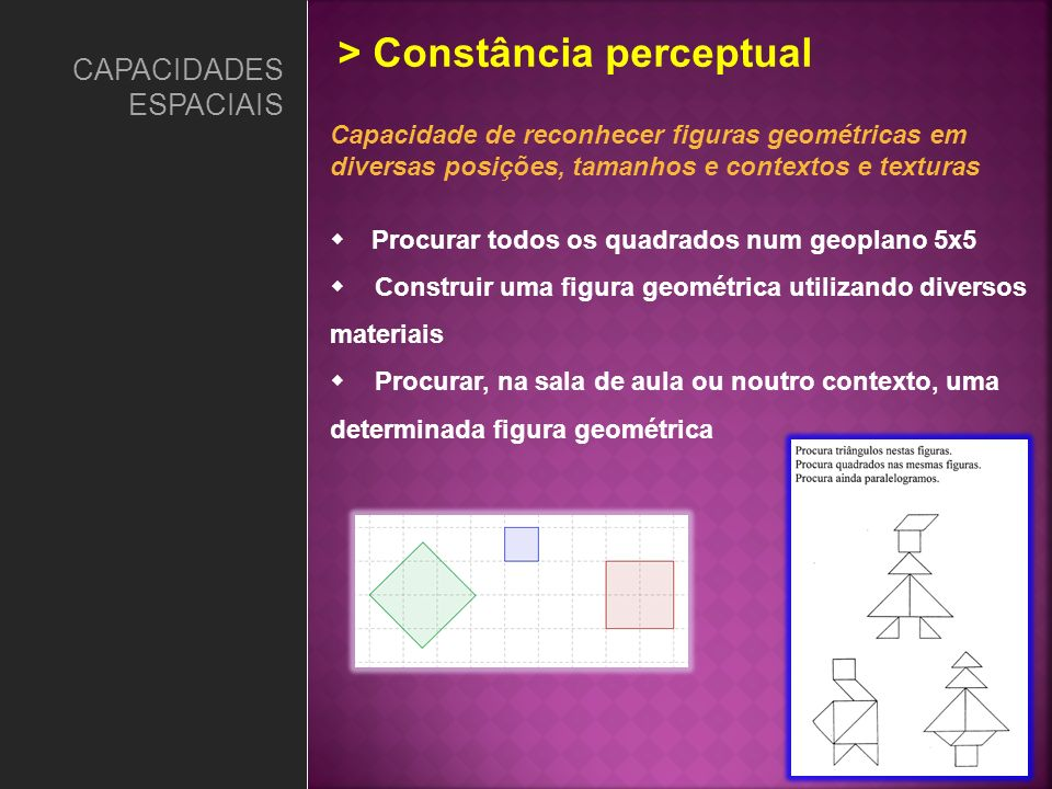 > Constância perceptual