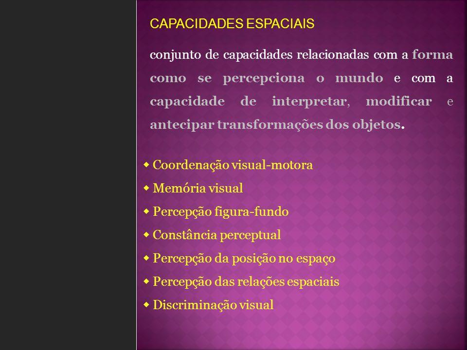 CAPACIDADES ESPACIAIS