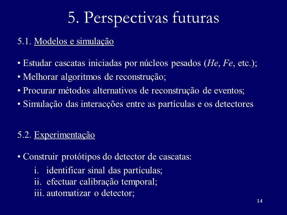 5. Perspectivas futuras 5.1. Modelos e simulação