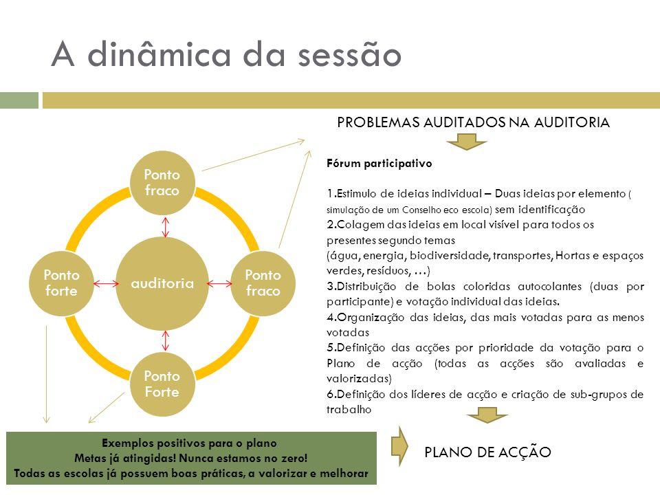 A dinâmica da sessão PROBLEMAS AUDITADOS NA AUDITORIA PLANO DE ACÇÃO