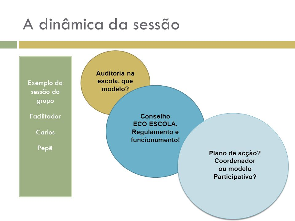 Auditoria na escola, que modelo Regulamento e funcionamento!