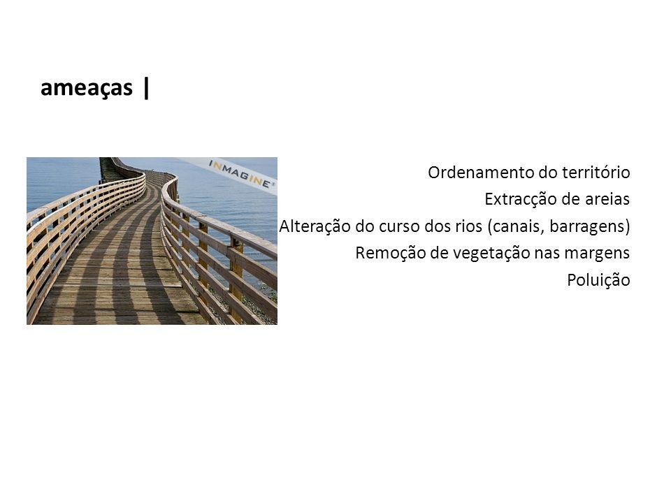ameaças | Ordenamento do território Extracção de areias Alteração do curso dos rios (canais, barragens) Remoção de vegetação nas margens Poluição