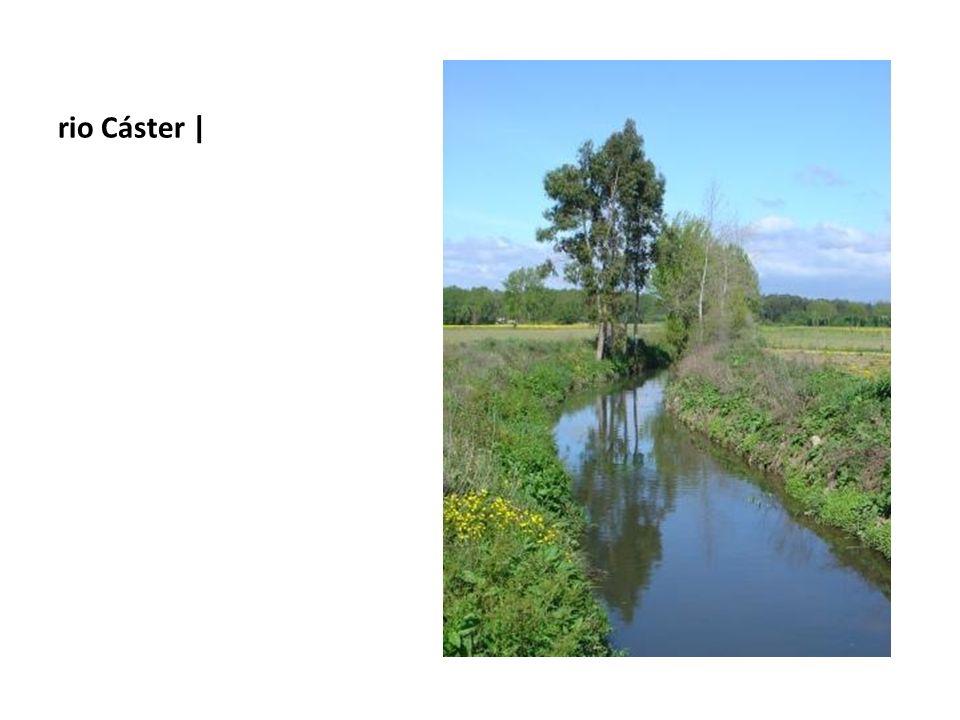 rio Cáster |