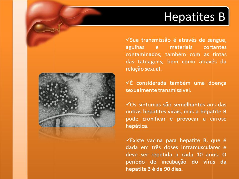Hepatites B