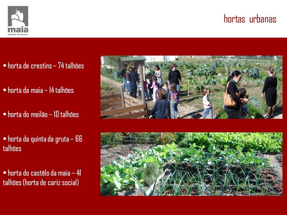 hortas urbanas • horta de crestins – 74 talhões