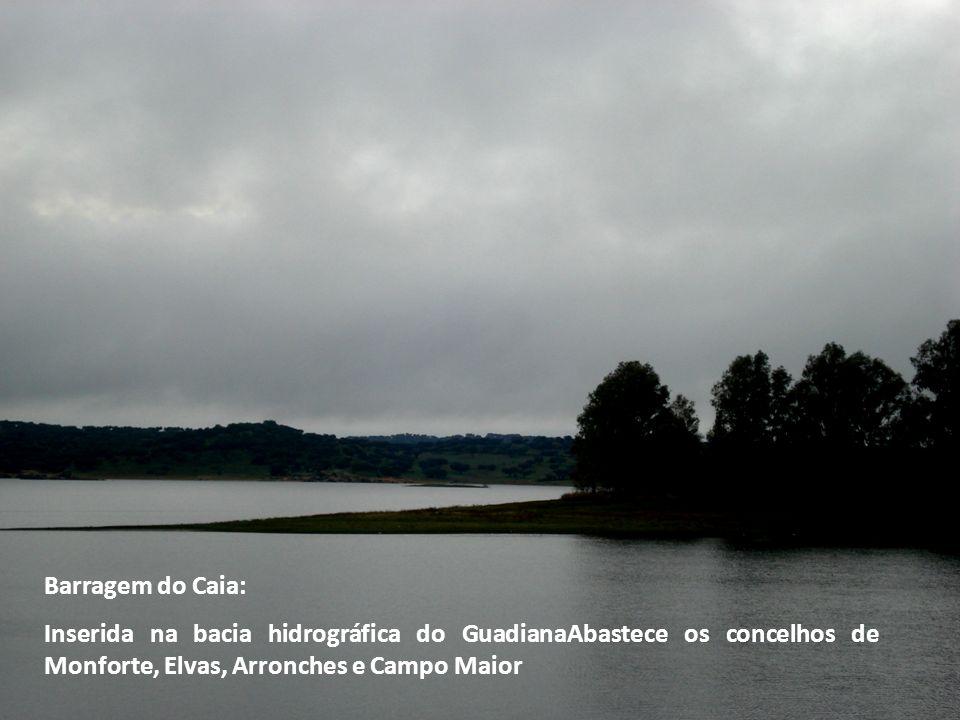 Barragem do Caia: Inserida na bacia hidrográfica do GuadianaAbastece os concelhos de Monforte, Elvas, Arronches e Campo Maior.