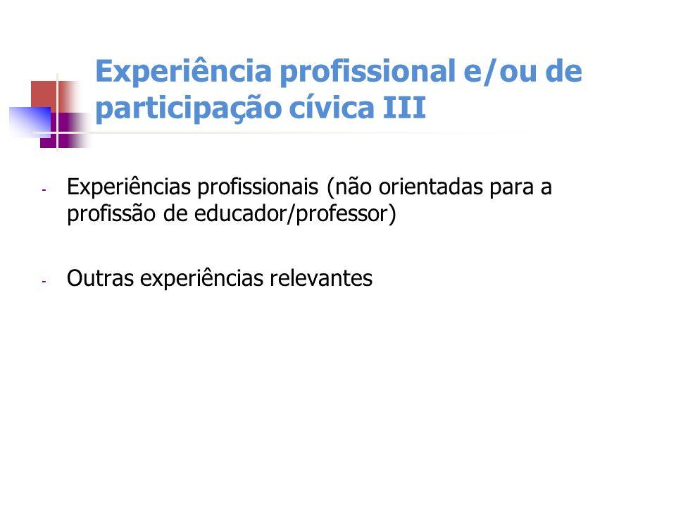 Experiência profissional e/ou de participação cívica III