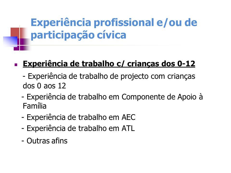 Experiência profissional e/ou de participação cívica