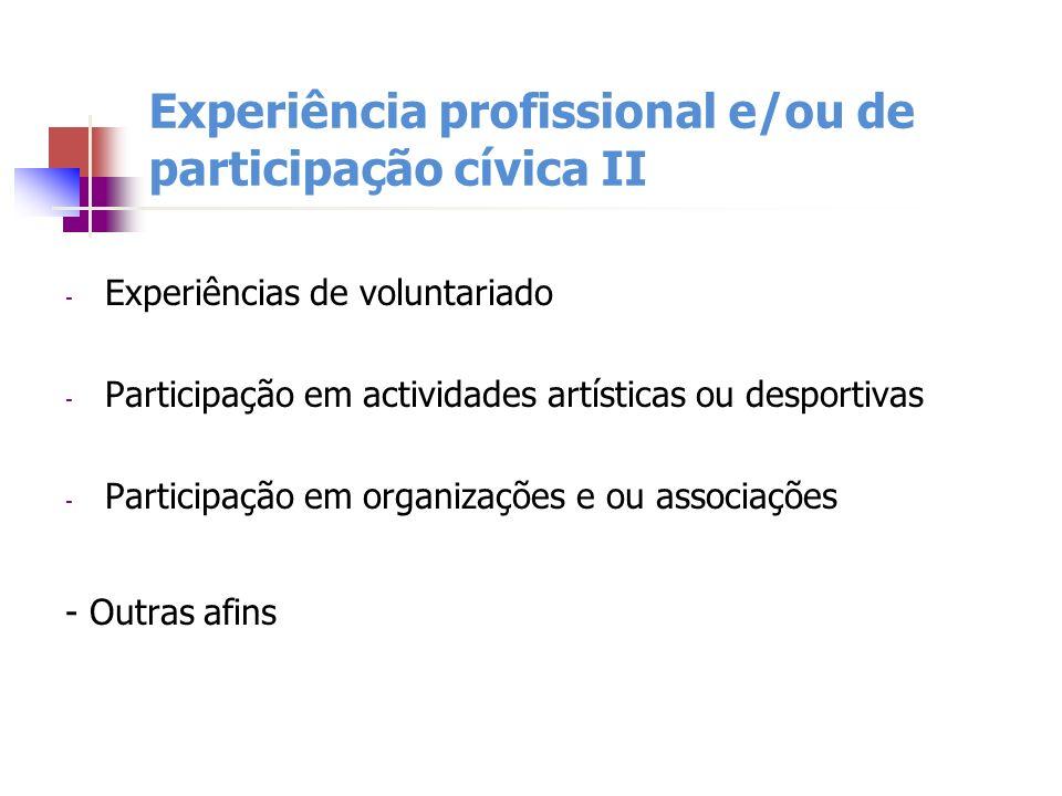 Experiência profissional e/ou de participação cívica II