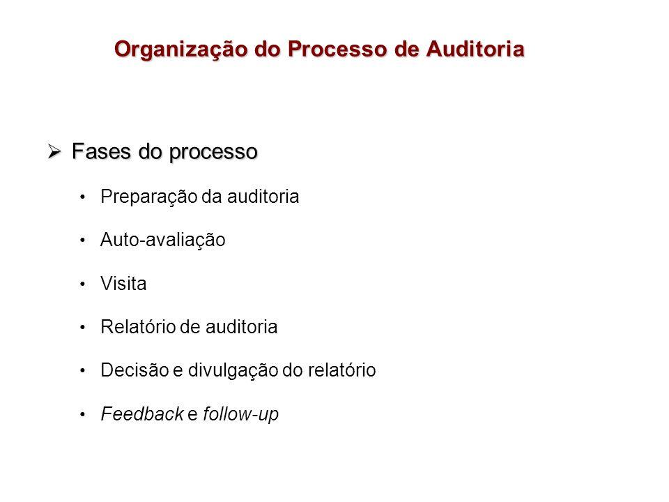Organização do Processo de Auditoria