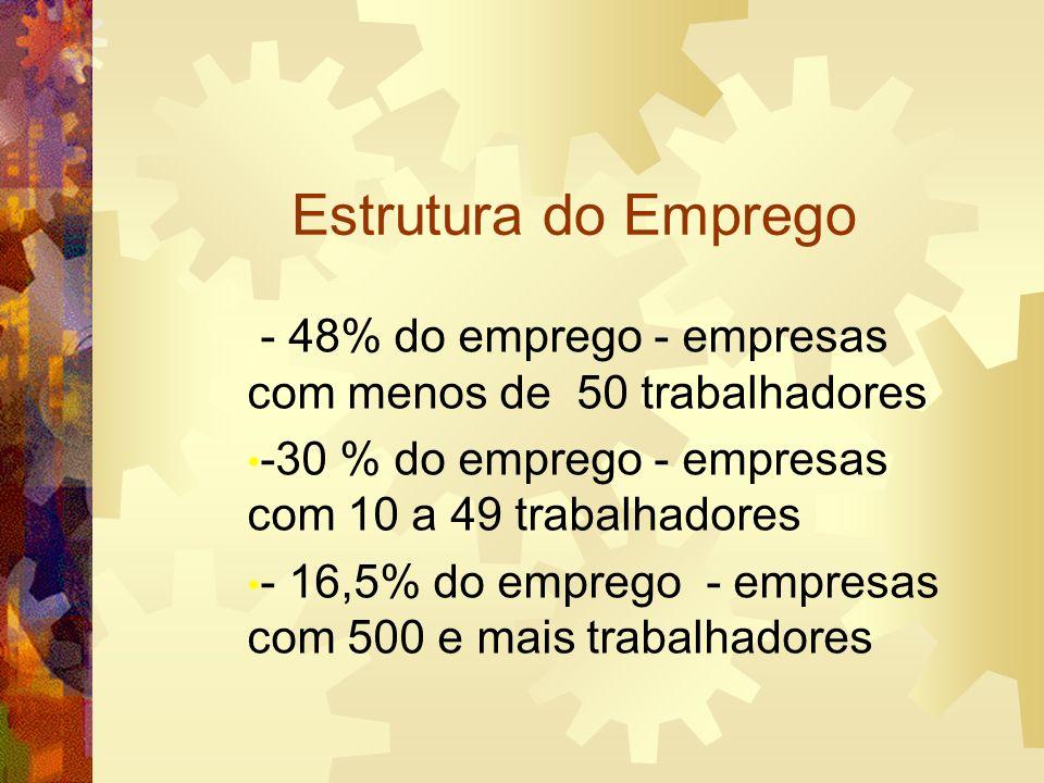Estrutura do Emprego - 48% do emprego - empresas com menos de 50 trabalhadores. -30 % do emprego - empresas com 10 a 49 trabalhadores.