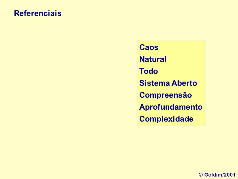 Referenciais Caos Natural Todo Sistema Aberto Compreensão