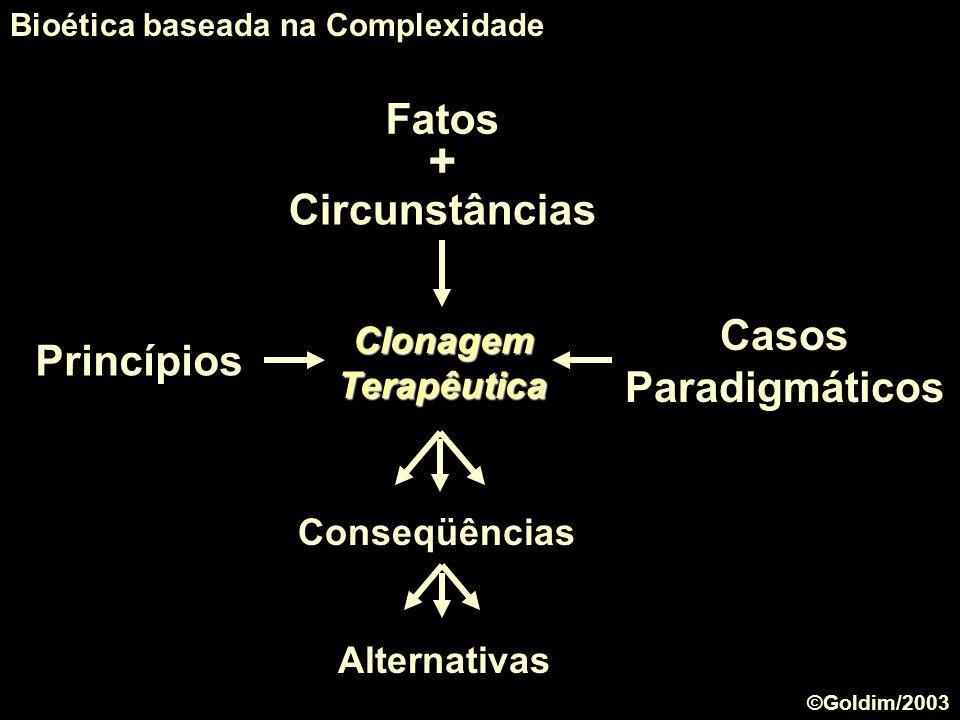 + Fatos Circunstâncias Casos Paradigmáticos Princípios