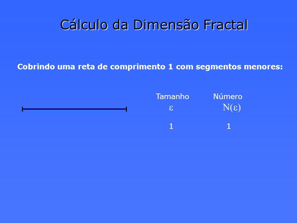 Cálculo da Dimensão Fractal