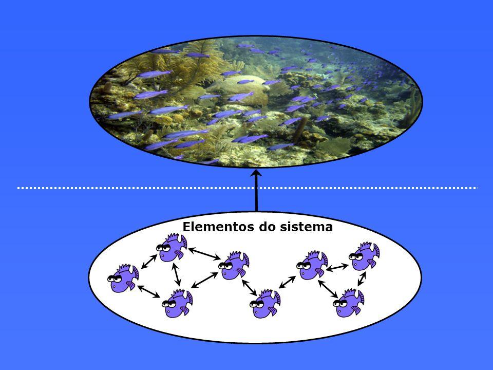 Elementos do sistema