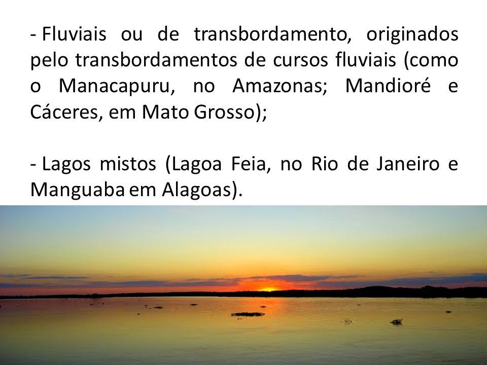 Fluviais ou de transbordamento, originados pelo transbordamentos de cursos fluviais (como o Manacapuru, no Amazonas; Mandioré e Cáceres, em Mato Grosso);