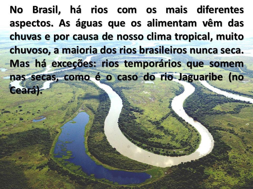 No Brasil, há rios com os mais diferentes aspectos