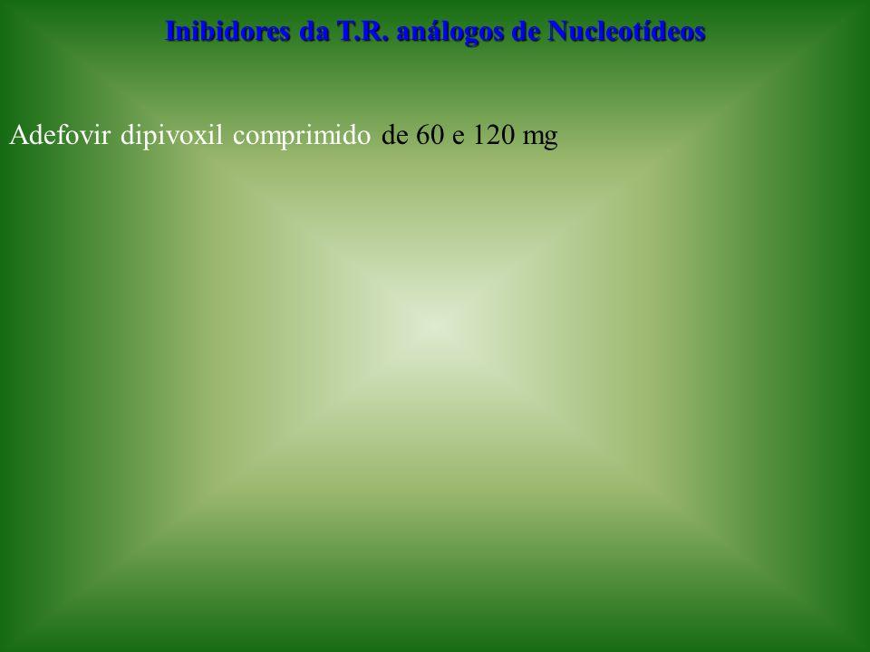 Inibidores da T.R. análogos de Nucleotídeos