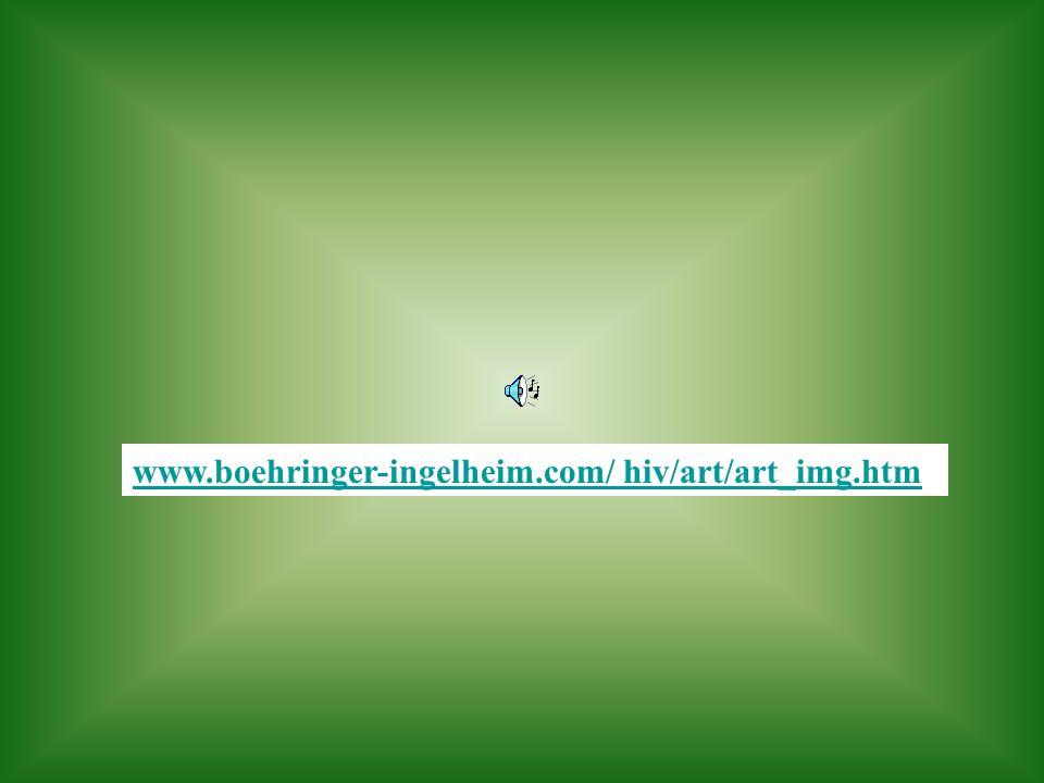 www.boehringer-ingelheim.com/ hiv/art/art_img.htm