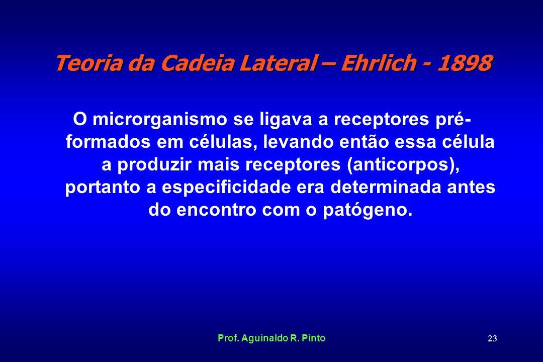 Teoria da Cadeia Lateral – Ehrlich - 1898