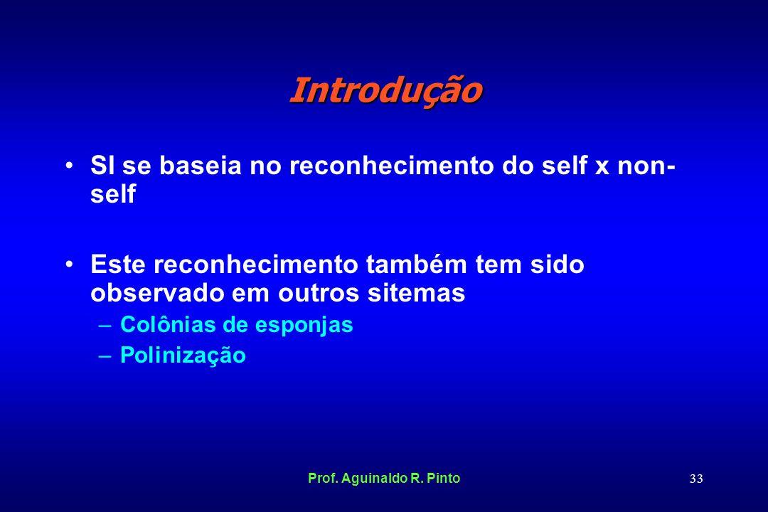 Introdução SI se baseia no reconhecimento do self x non-self