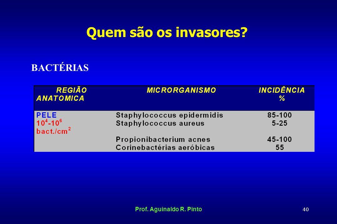 Quem são os invasores BACTÉRIAS Prof. Aguinaldo R. Pinto
