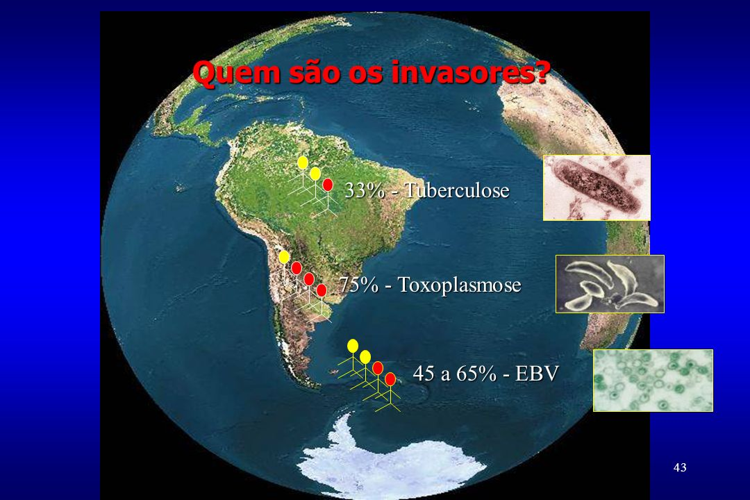 Quem são os invasores 33% - Tuberculose 75% - Toxoplasmose