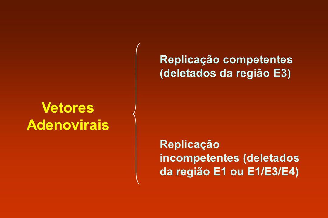 Vetores Adenovirais Replicação competentes (deletados da região E3)