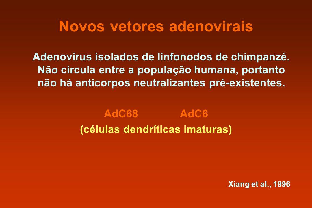 Novos vetores adenovirais