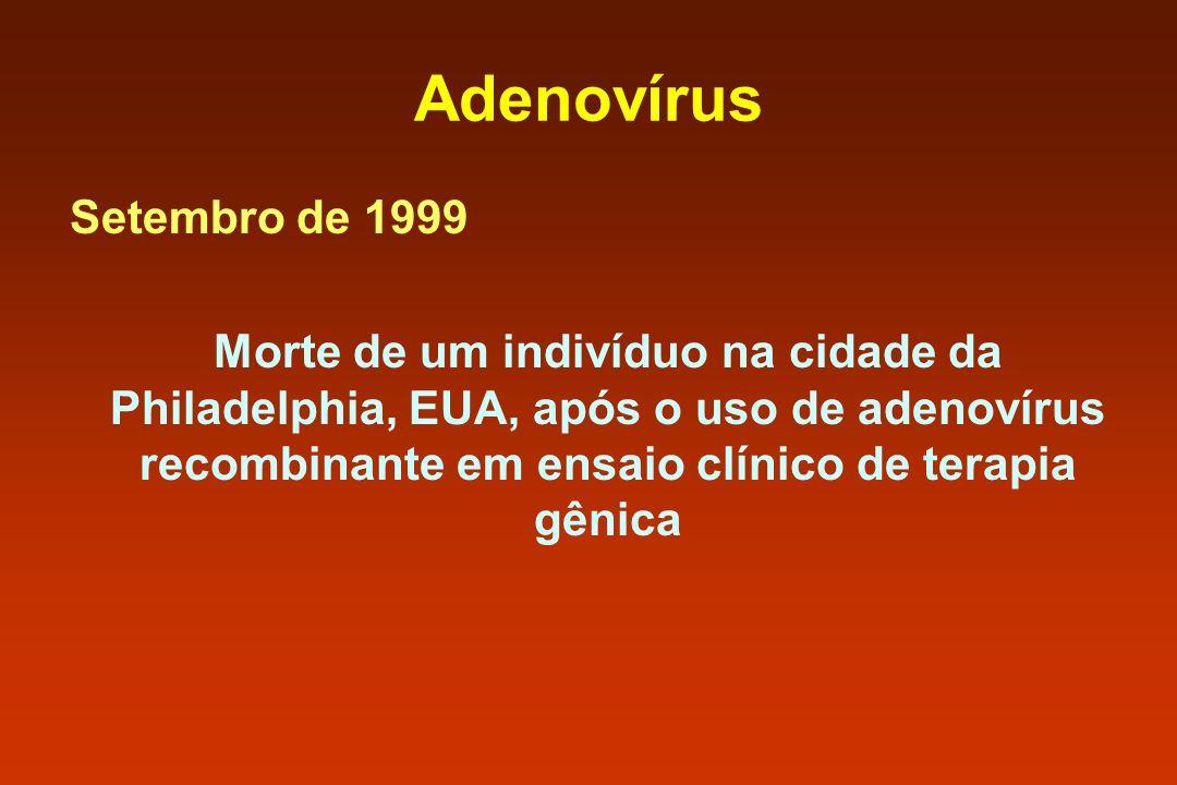 Adenovírus Setembro de 1999