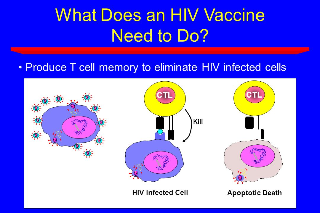 What Does an HIV Vaccine Need to Do