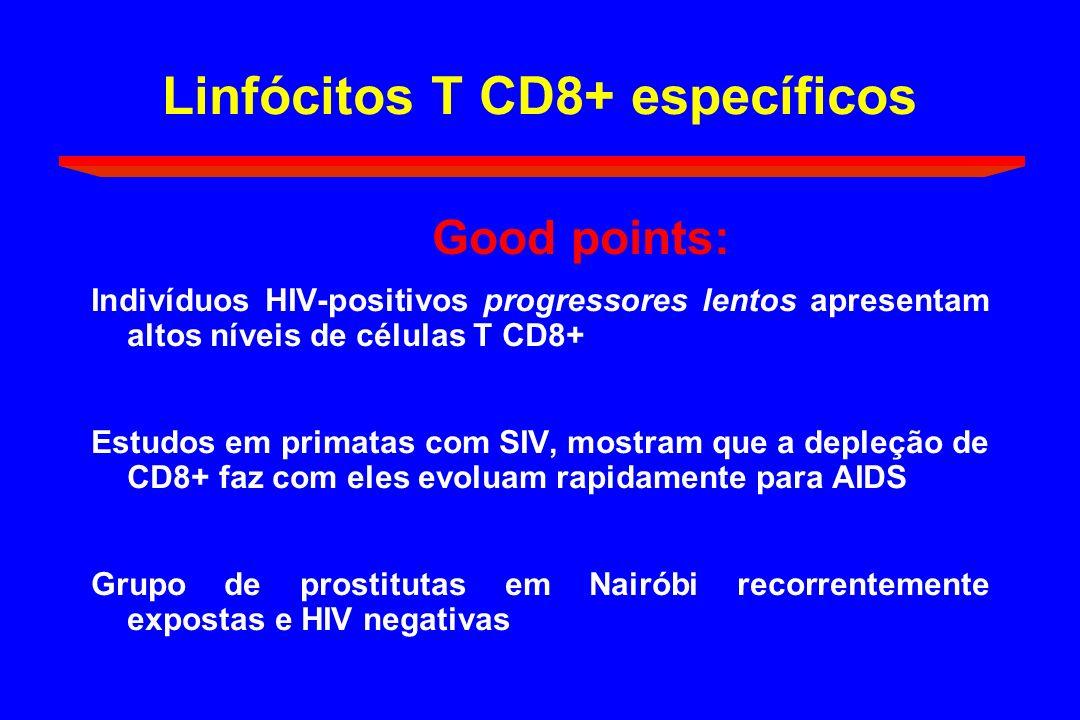 Linfócitos T CD8+ específicos