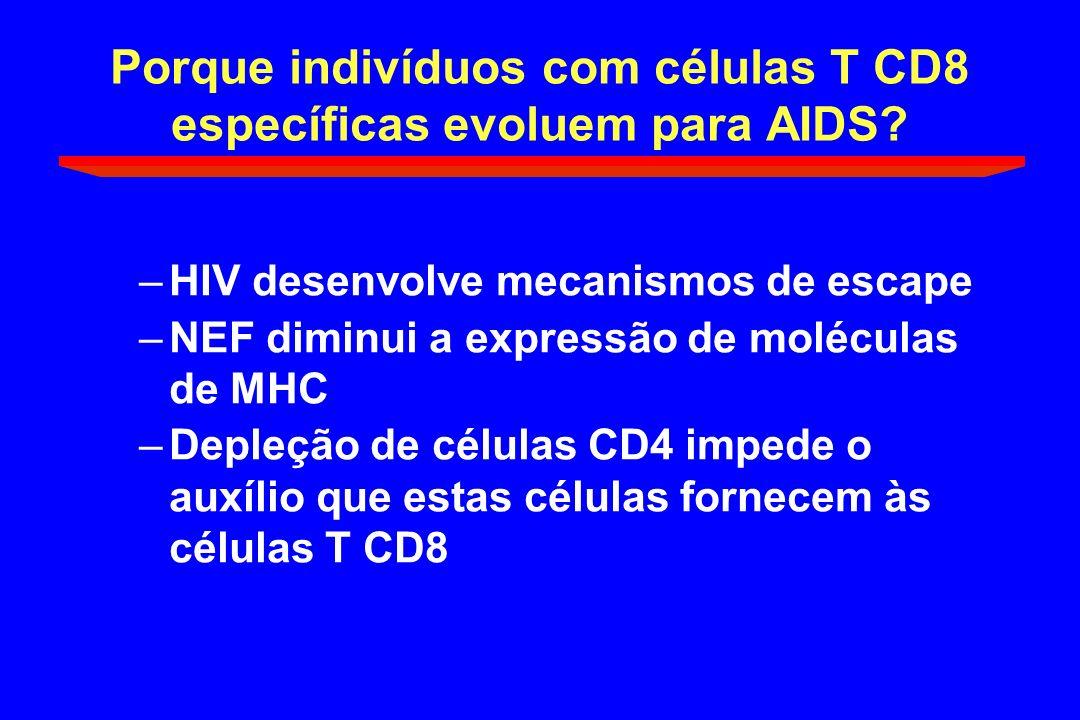 Porque indivíduos com células T CD8 específicas evoluem para AIDS
