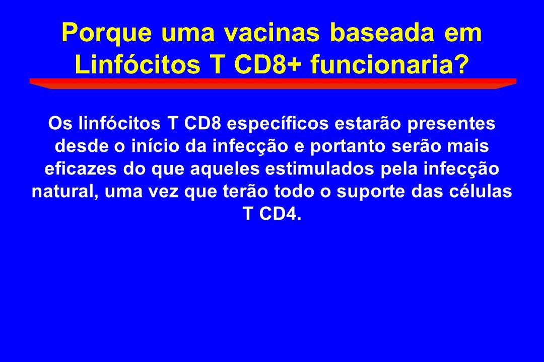 Porque uma vacinas baseada em Linfócitos T CD8+ funcionaria