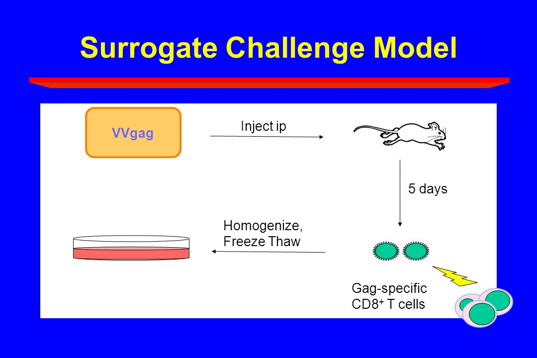 Surrogate Challenge Model