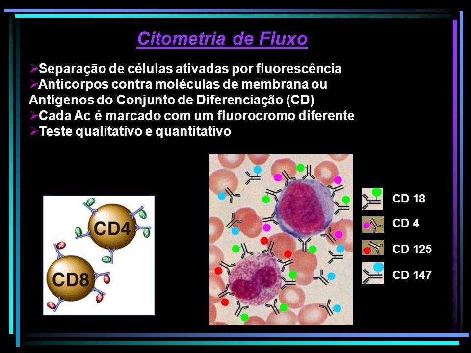 Citometria de Fluxo Separação de células ativadas por fluorescência