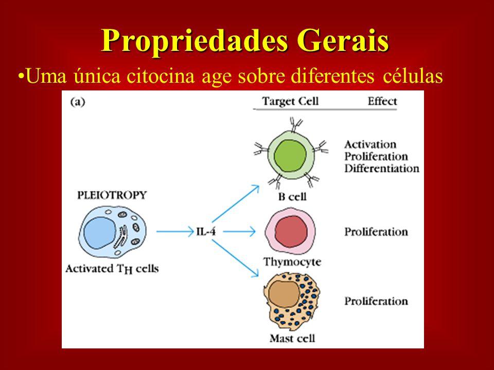 Propriedades Gerais Uma única citocina age sobre diferentes células