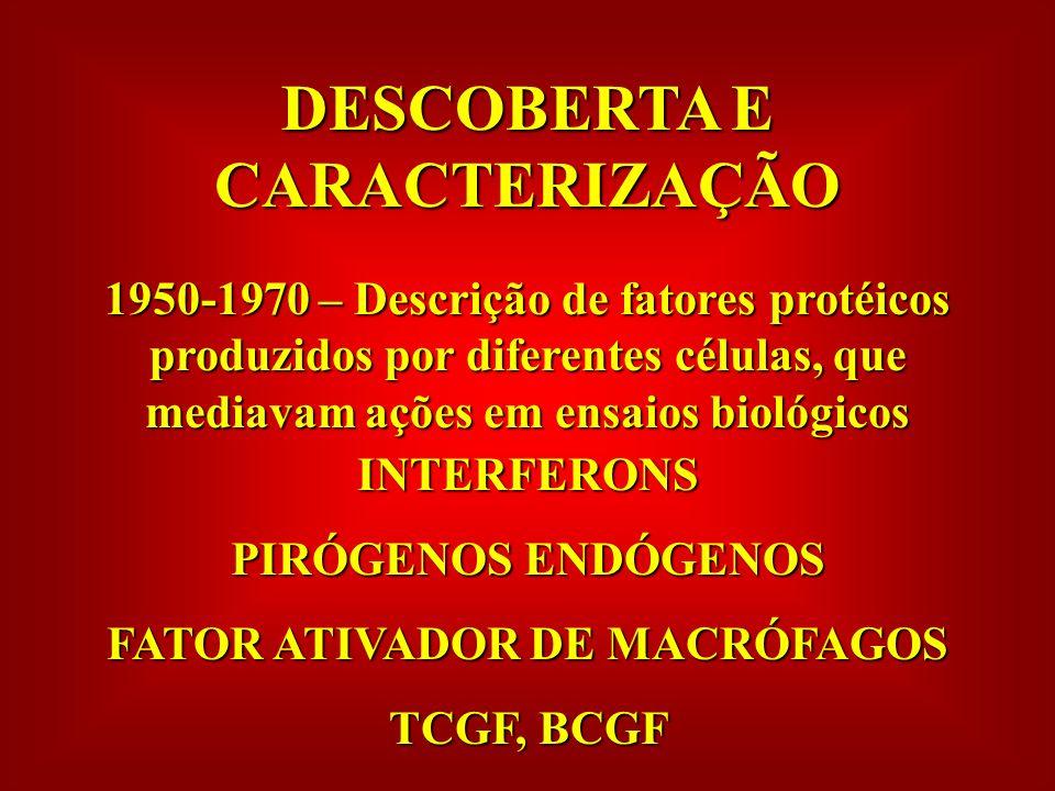 DESCOBERTA E CARACTERIZAÇÃO FATOR ATIVADOR DE MACRÓFAGOS