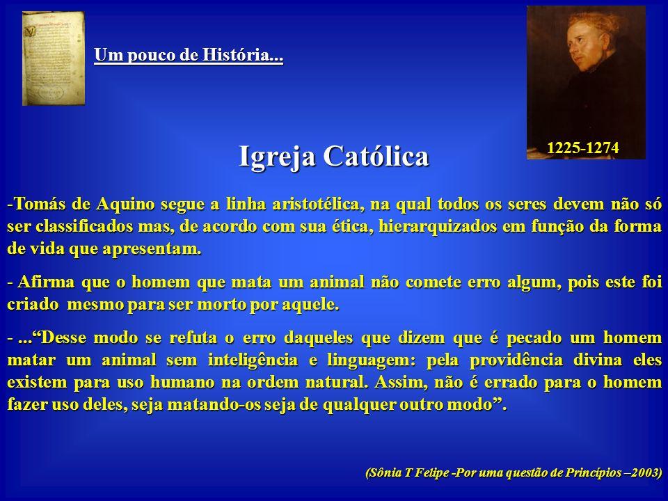Igreja Católica Um pouco de História...