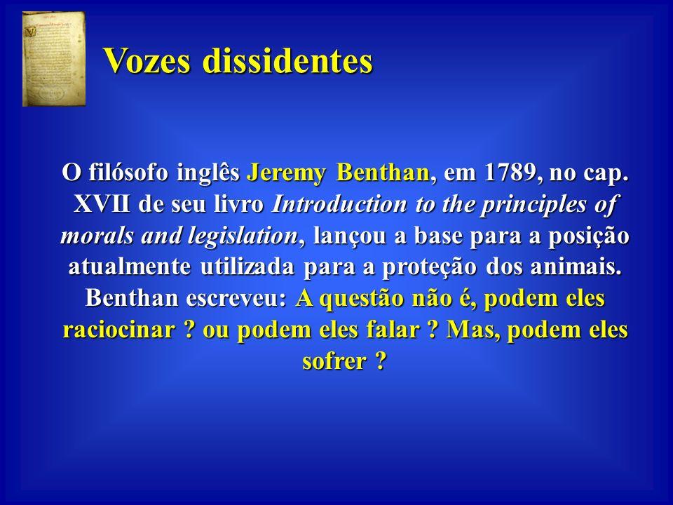 Vozes dissidentes