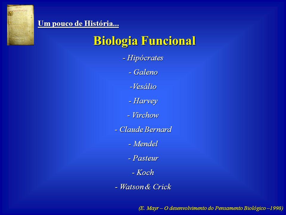 Biologia Funcional Um pouco de História... - Hipócrates Galeno Vesálio