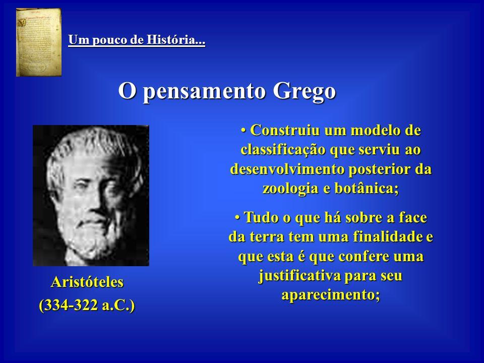 Um pouco de História... O pensamento Grego. Construiu um modelo de classificação que serviu ao desenvolvimento posterior da zoologia e botânica;