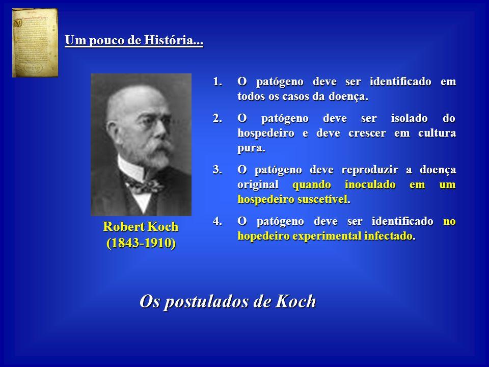 Os postulados de Koch Um pouco de História... Robert Koch (1843-1910)
