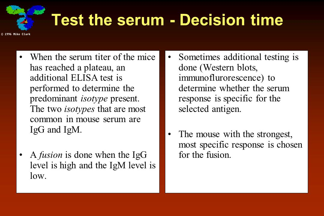 Test the serum - Decision time