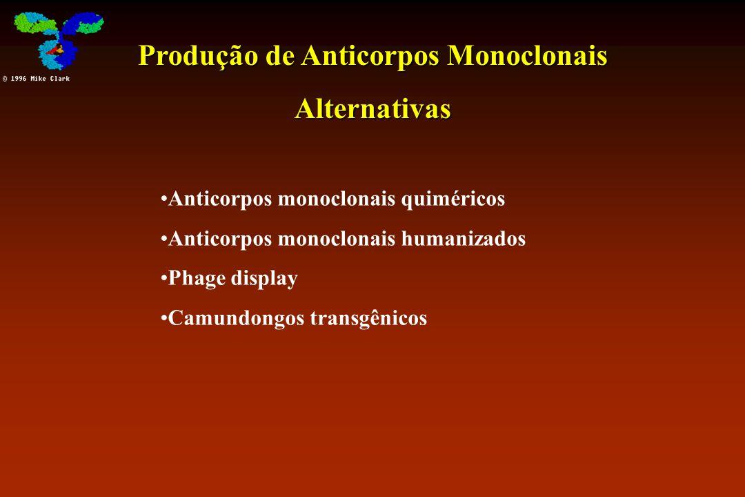 Produção de Anticorpos Monoclonais